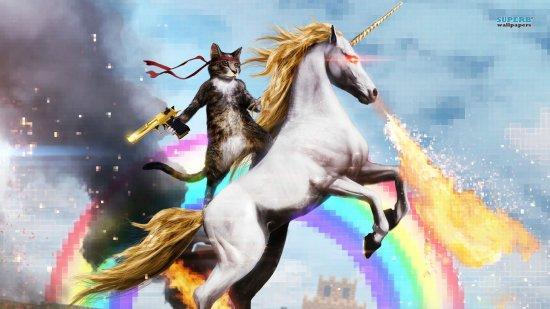 cat-riding-a-fire-breathing-unicorn-16414-1366x768.jpg