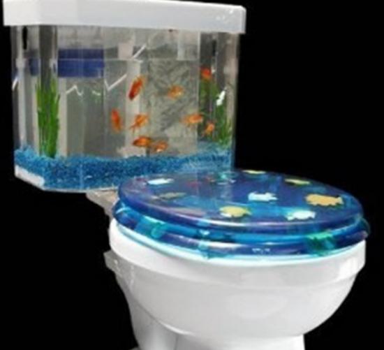 fishtoilet.png
